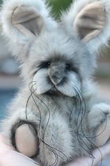 Mink Bunny Rabbit (kimbearlyoriginal) Tags: bunny rabbit ooak kimbearlys mink fur artistmade