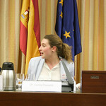 European Student Think Tank Spanish Parliament Debate thumbnail