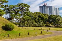 IMG_2474 (Evgeny Gorodetskiy) Tags: sunshine autumn garden landscape building travel cityscape outdoor weekend city park skyscrapper himarikiyu japan tokyo minatoku tōkyōto япония jp