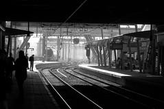 utrecht central station (gerben more) Tags: blackwhite utrecht railwaystation transportation travel transport train rails netherlands nederland monochrome