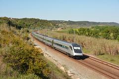 AP 135 - Santana (valeriodossantos) Tags: comboio cp train passageiros cpa4000 comboiodependulaçãoactiva automotoraelétrica alfapendular rápido cplongocurso santana cartaxo linhadonorte caminhosdeferro portugal