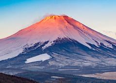 Early spring Fuji (shinichiro*) Tags: 20170303ds44615 2017 crazyshin nikond4s afsnikkor70200mmf28ged spring march fuji lakeyamanaka 富士 山中湖 朝 redfuji 紅富士 33114611401 721380 201703gettyuploadesp