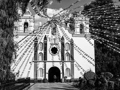 Santa Maria del Tule (Duric) Tags: église mexique mexico oaxaca tule noiretblanc bw rubans