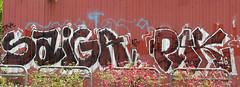 graffiti and streetart in bangkok (wojofoto) Tags: streetart graffiti bangkok thailand wojofoto wolfgangjosten saiga pak