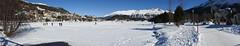 St. Moritz Lake (gavinkenyon564) Tags: lake stmoritz moritz st frozen snow ice blue sky horse sculpture town panorama