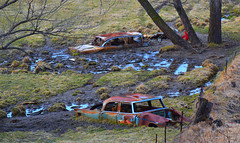 double parked (David Sebben) Tags: plymouth savoy chevrolet abandoned iowa cars automobiles pasture