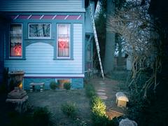 Home Invasion (david grim) Tags: