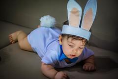 cute rabbit (Lays Lima Fotografia) Tags: baby boy babyboy coelho pascoa rabbit pretty cute