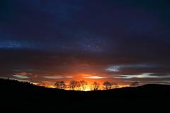 Orange meets the blue of Night (alan.irons) Tags: sunrise dawn morn cloudsstormssunsetssunrises sunlight scotland silhouette sky strathmore trees valley morning sun angus ecosse canon subtle calm