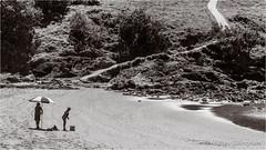 Australia-2875 (AndyG01) Tags: australia coffsharbour beach ocean sea