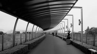 Bridge of gardens...