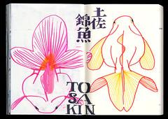 2017.03.18-07 (タケウマ) Tags: sketch sketchbook studiotakeuma doodle drawing illustration illustrator pen aquarium 須磨海浜水族公園 水族館 fish art