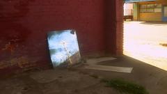IMG_0269 (revjdevans) Tags: shreveport shreveportlouisiana window reflection