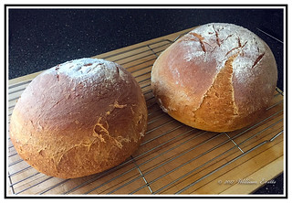 Homemade Bread - Hot from the Oven.