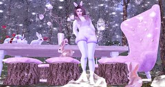 We're All Mad Here (Naria Panthar) Tags: secondlife sl avatar alice wonderland catwa