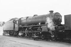 45069 (Gricerman) Tags: black5 black5class 460 willesden willesdenshed 45069 steam steambr steammidland midland midlandsteam midlandsteambr br britishrailways brsteam brmidland lms