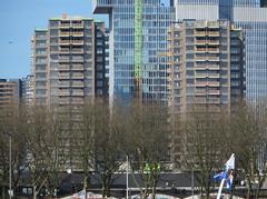 Boston & Seattle_3403B (JespervdBerg) Tags: hhf hollandhoogbouwforum hollandhoogbouwforums rotterdam kopvanzuid wilhelminapier bostonseattle maashaven katendrecht derotterdam skyline skyscrapercity ssc skyscraper view water harbour europe world architecture architectuur spring 2017 sun construction