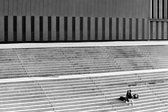 Striped Spring (Thomas Listl) Tags: thomaslistl blackandwhite noiretblanc biancoenegro film ilford hp5 couple spring stripes stairs graphic romance