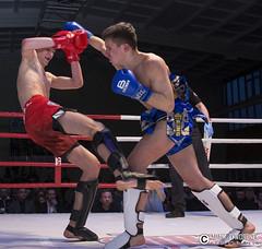 """adam zyworonek fotografia lubuskie zagan zielona gora • <a style=""""font-size:0.8em;"""" href=""""http://www.flickr.com/photos/146179823@N02/33695488025/"""" target=""""_blank"""">View on Flickr</a>"""