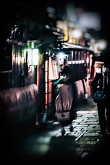 Going Places (Rekishi no Tabi) Tags: kyoto gion maiko apprenticegeiko apprenticegeisha blurry sony japan