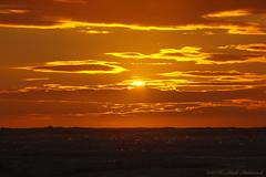 Belgian coast (Natali Antonovich) Tags: belgiancoast seasideresort seaside seashore seaboard northsea sea nature landscape sunset horizon water sun sky reflection celestialmood