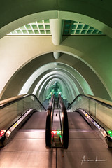 Gateway III (Alec Lux) Tags: architecture architecturephotography belgium calatrava design elevator escalator guillemins liège luik minimal minimalism santiago santiagocalatrava stairs station train trainstation urban liege be