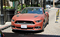 Ford Mustang GT (SPV Automotive) Tags: ford mustang gt coupe sports car matte red