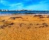 Algas (mirguzman) Tags: playa arbeyal gijon arena amarillo azul granos