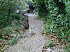 Ψίνθος (Psinthos.Net) Tags: ψίνθοσ psinthos spring april απρίλησ απρίλιοσ άνοιξη φύση εξοχή nature countryside afternoon απόγευμα απόγευμαάνοιξησ ανοιξιάτικοαπόγευμα psinthosvalley valley κοιλάδα κοιλάδαψίνθου κοιλάδαψίνθοσ rocks βράχοι βράχια μονοπάτι path pavement paved λιθόστρωτο πρασινάδα greenery wildivy άγριοσκισσόσ φύλλα leaves ρυάκι πέτρεσ rivulet stones πικροδάφνη oleander planetrees trees δέντρα πλατάνια πλάτανοι πλατάνοι greens χόρτα