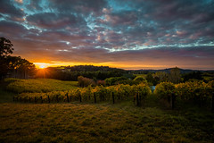 Perfect dawn (dmunro100) Tags: autumn adelaide hills dawn