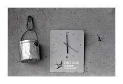 Help the swallows ! ;/) (schyter) Tags: киев iiia kiev arsenal rf soviet camera юпитер11 jupiter11 4135 sovietlens lightmeter sverdlovsk4 kodak trix tank ap compact epson v600 analogica analogic film pellicola 135 format formato 35mm bw bn bianconero blackwithe homemadescanned homemade development soup recipe allaperto lodi basiasco belvignate rangefinder kievgrip sfondo bordo di una foto testo bianco e nero analogicait