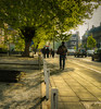 Project 365; #117 (iMalik1) Tags: project 365 days photo day challenge potd ealing broadway council town hall high street photographer imalik photography walking work morning bright sunshine clouds sky commute traffic tree urban landscape canon eos m3