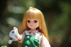 In the Garden 05 (Licca-chan) Tags: autumn amy jasmine gloria honey licca