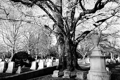 untitled-16 (mike337) Tags: bw cemetery boston raw sony a330 mtauburn 2011 tamron18200