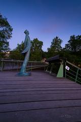 - Corto Maltese - (Frank Gautier) Tags: statue pose nikon 10 musée ciel arbres pont 24 vin mm nikkor maltese nuit escalier charente corto angouleme fleuve chais bande rampe longue dessinée magelis cibdi d3100