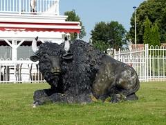 """""""Bison fûté"""" se reposant avant les grands départs ? (xavnco2) Tags: france advertising restaurant buffalo grill werbung bison publicité picardie somme"""