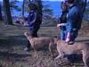 WorldsEnd11-20-2011018