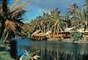 Coco Palms Lodge Wailua c1955 (Kamaaina56) Tags: hawaii hotel slide 1950s kauai wailua cocopalms