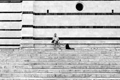 """ The man and the dog "" (pigianca) Tags: blackandwhite italy dog man cane italia cathedral gothic uomo streetphoto siena duomo biancoenero candidportrait fujix100s vision:beach=089 vision:text=091 goticosenese"