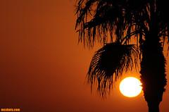 OctoberTenth2013 (mcshots) Tags: ocean california autumn sunset sea sky usa sun beach nature water palms coast skies jetty stock palmtrees socal tropical mcshots pdr lifeguardtower losangelescounty