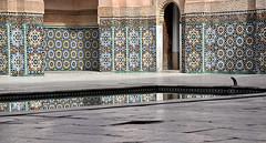 Marrakech - Madrasa di Ben Youssef (Tumma_non_Ph) Tags: el marocco marrakech medina marrakesh piazza palazzo menara suk suq badi fna jmi elfn jeemla