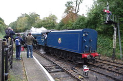 IMGP3252 (Steve Guess) Tags: uk england train railway loco hampshire steam gb locomotive tornado alton brittania braunton m4m ropley 70000 alresford 34046 60163