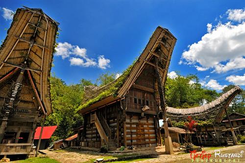 Tongkonan as a museum