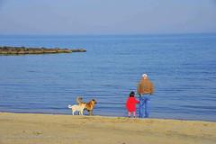 Karasu, Sakarya (Sakarya niversitesi) Tags: blue sea blacksea karadeniz deniz sahil karasu sakarya