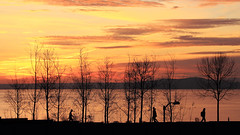 Seattle (Lue Huang) Tags: seattle city sunset canon citylife tamron vc 70300 olympicsculpturepark 600d