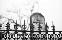 (mynamesdonny) Tags: blackandwhite film monochrome cemetery analog canon fence austin texas kodak ae1 gothic 400tx d76 kodaktrix inmemoriam 50mmf14 oakwoodcemetery filmphotography filmisnotdead homedevelop selfdevelop cemeteryphotography epsonv500 believeinfilm donnytidmore