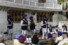 A musical troupe perfoming religious songs in front of Akal Takht (Ashish A) Tags: india canon buildings religious temple asia action religion sikh devotee devotees amritsar digitalslr sikhism goldentemple musicalinstruments whitebuilding canoncamera religioussymbol musicalperformance peoplesitting sittingpeople akaltakht goldentempleinamritsar canon650d musicaltroupe religioussongs canont4i peoplewearingturbans peopleinsidegoldentemple peoplelisteningtosongs