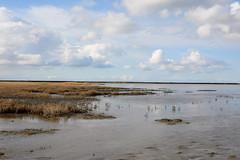 Mud flat......er gaat niets boven Groningen. (Snoek2009) Tags: sky green nature water clouds waddenzee groningen wad mudflat worldheritage waddensea westernieland