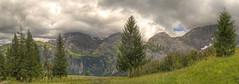 Drosleloch 2008 (stega60) Tags: trees panorama naturaleza mountain nature clouds forest landscape schweiz switzerland countryside scenery heaven suisse natur himmel wolken paisaje scene berge paysage landschaft wald bäume hdr stiched berneroberland región swizzera louwenesee stega60