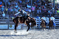 P3110211 (David W. Burrows) Tags: cowboys cowgirls horses cattle bullriding saddlebronc cowboy boots ranch florida ranching children girls boys hats clown bullfighters bullfighting